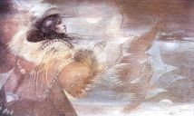 Shadow Play, de Susan Seddon Boulet