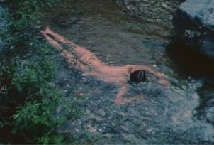 gp-1190-creek-2-still-2